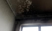 Sống chung cư vip bất an vì lo cháy nổ