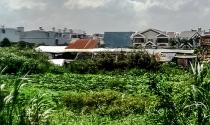 Quy hoạch treo ở Q.Bình Tân: Gần 17 năm không biết chủ đầu tư là ai