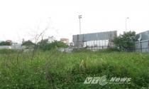 Đất dự án bỏ hoang, Hà Nội vẫn khẳng định chợ cóc 'mọc' vì không có đất