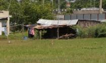 TP.HCM: Kiến nghị cấp sổ đỏ cho nhà, đất không có giấy tờ hợp lệ