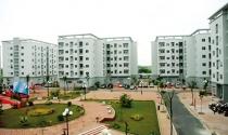 Tổng kiểm tra toàn diện các dự án nhà thu nhập thấp