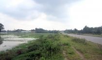 Phú Thọ: Bán khống hàng trăm lô đất?