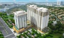 I-Home 359 Phạm Văn Chiêu đón nhà đầu tư Châu Âu vào siêu thị