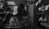 Thiếu nhà ở - Bài toán chưa lời giải của Hong Kong