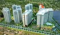 Tỷ phú Singapore mua một nửa công ty địa ốc của Bầu Đức