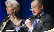 IMF giữ dự báo kinh tế toàn cầu tăng trưởng 3,5% trong năm 2015