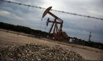 Giá dầu thế giới phi mã, cổ phiếu dầu khí dậy sóng