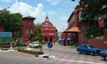 Malaysia: Một công ty bất động sản bị phạt nặng vì chặt cây