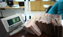 Đất Xanh phát hành hơn 10,6 triệu cổ phiếu để trả cổ tức