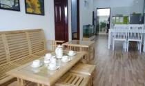 Công bố và khai trương nhà mẫu IDICO Tân Phú