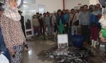 Gần 100 tiểu thương đổ cá vào ban quản lý chợ phản đối di dời