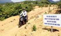 Đà Nẵng: Thất vọng dự án khu công nghệ thông tin