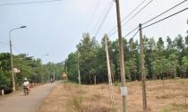 Đất xung quanh dự án sân bay Long Thành đòi tăng giá
