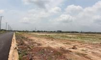 Đất sân bay Long Thành: Đang lên cơn sốt ảo?
