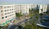 Phát triển nhà ở cho người nghèo nông thôn và lao động thành thị
