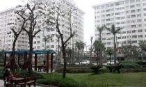 Hà Nội đã hoàn thành 8.000 căn hộ cho người thu nhập thấp