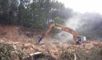 Hải Phòng: Xẻ núi, phá rừng xây biệt thự