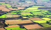 Giá đất nông nghiệp tại Anh đạt kỷ lục mới