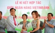 Mở bán dự án Thang Long Home – Phước An