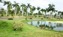 Phát Đạt: Lợi nhuận quý 3 tăng vọt nhờ bán đất nền