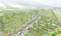 Thành lập Thành phố Công nghệ xanh Hà Nội với hơn 57 ha
