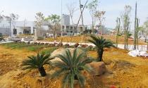 Đà Nẵng: Người dân chê công viên giữa trung tâm TP quá… xấu!