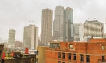 Thị trường bất động sản Sydney hấp dẫn trở lại