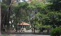 Kiến nghị dừng xây hồ ngầm điều tiết tại công viên Bàu Cát