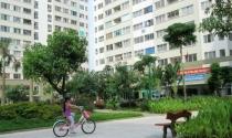 Yêu cầu rà soát thực trạng cấp giấy chứng nhận nhà ở tại các dự án
