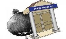 Hà Nội công bố danh sách 13 đơn vị nợ hơn 35 tỷ đồng tiền thuê đất