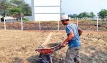 Nghịch lý đóng tiền sử dụng đất