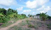 Thu hồi 4 dự án đầu tư du lịch do chậm triển khai tại Bình Định