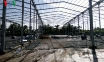 Tiền Giang: Đình chỉ công trình xây dựng không phép có quy mô lớn