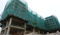 Tp.HCM sẽ công khai dự án đang thế chấp ngân hàng