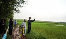 Nam Định: Nỗi lòng người dân mất đất sản xuất