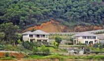 Biệt thự tiền tỷ 10 năm tan hoang nơi núi rừng
