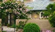 Nhà vườn: Xu hướng của tương lai