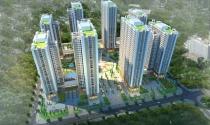 Phó Thủ tướng đề nghị Hà Nội thẩm định dự án của Geleximco