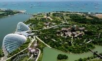 Quy hoạch và quản lý đất đai: Kinh nghiệm từ Singapore