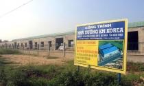 Quảng Nam: Nhà máy bất ngờ mọc trên đất trồng lúa