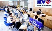 BIDV bất ngờ trả cổ tức bằng tiền mặt theo yêu cầu của Bộ Tài chính