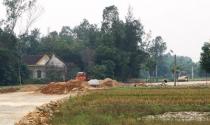 """Nghệ An: Nhiều hộ dân bức xúc vì bị thu hồi đất để…chờ dự án """"treo"""""""