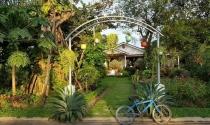 Bí kiếp đầu tư đất vườn ngoại ô Hà Nội