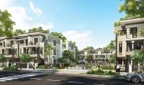 Biệt thự phố LAVILA - hòa cùng xu hướng sống xanh