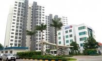 Bàn giao căn hộ The Habitat: Niềm vui an cư trong môi trường sống quốc tế