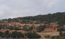 Phạt chủ đầu tư dự án đào xới bán đảo Sơn Trà 40 triệu