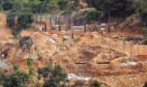 Đà Nẵng: Cấm vĩnh viễn dự án không đủ điều kiện trên bán đảo Sơn Trà