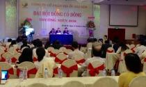 Saigonres lên kế hoạch doanh thu hơn 1.200 tỷ năm nay
