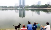 """Lấp hồ Thành Công xây nhà: Lãnh đạo Hà Nội nói """"cũng là một cách làm"""""""