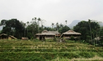Xây resort chui cạnh khu bảo tồn